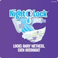Locks Away Wetness, Even Overnight